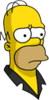Pin Pal Homer Sad Icon