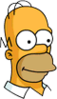 Homer Future Icon
