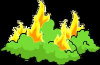 Tapped Out Burning Bush