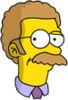 Canadian Flanders Confused Icon