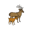 Buck and Fawn Menu
