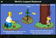 RedwoodGuide