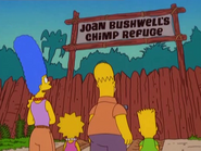 Simpsons at Joan Bushwell's Chimp Refuge in the show