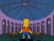 Bart in the Animal Feeding Area in the show