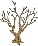 Tree00 (1)