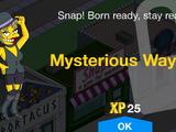 Mysterious Waylon