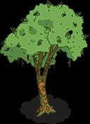 Brazilwood Tree Menu