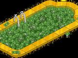 Money Pool