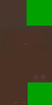 0x647DDF568A1933C7 dark brown skintone