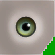 0xD1659CCE910B3822 bluegreen eyes