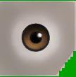 0xD043A3E997F88588 lt brown eyes copy
