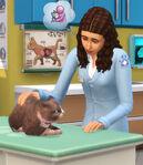 Les Sims 4 Chiens et Chats 10