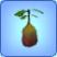 Planta prohibida