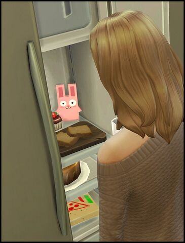 File:Freezer Bunny fridge.jpg