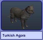Turkish Agora (Sims 2)