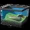 Песчаная лягушка со спиральным узором