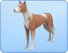 File:Breed-l42.png