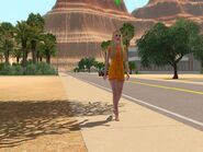 Ips-ts3luckypalms-simwalking