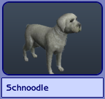Schnoodle (Sims 2)