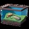 Лягушка с волнообразными полосками
