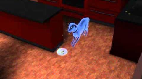 My Sims 3 ghost pet eating Ambrosia ~