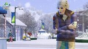 Sims 3 New Winter Photo