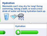 TS4 Hydration Need