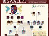 Bigwallet Family