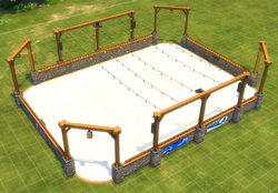Large Rustic Ice Rink