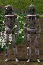 Male Female Simbots