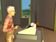 Cash Register (The Sims 2)