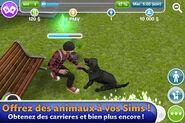 Les Sims Gratuit (iPhone) 05