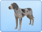 File:Breed-l15.png