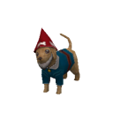 Carter Caninenimus Gnome