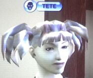 Mimi Landgraab's face in The Sims Bustin Out CAS