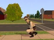 Ninja - The Sims 2