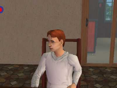 File:RyanVargheimsims2.jpg