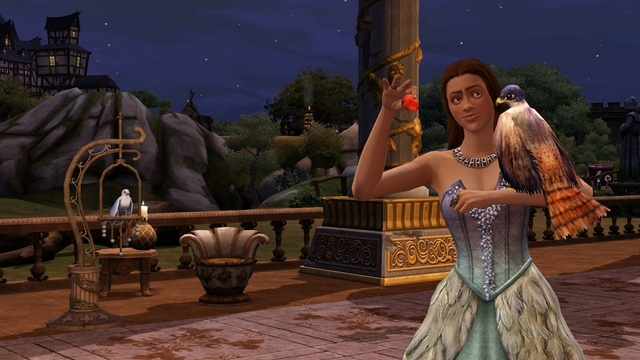 File:The Sims Medieval P&N Pet Falcon.jpg