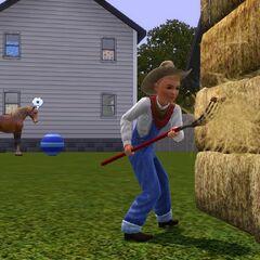 Un niño ayudando con las tareas del campo.