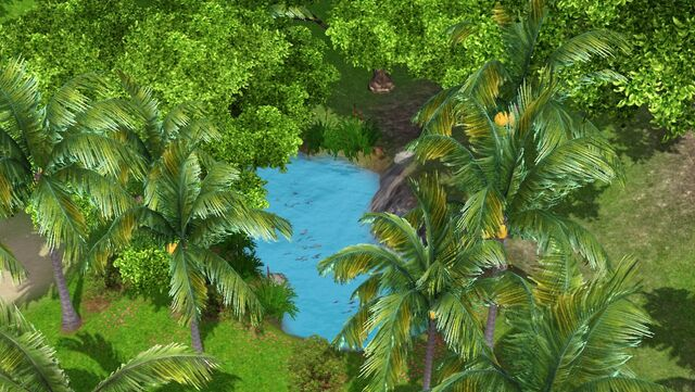 File:Jungle Fishing Spot.jpg