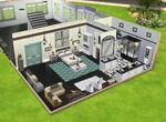Les Sims 4 Chiens et Chats - Concept Travis Koller 3