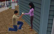 Starr Proposal