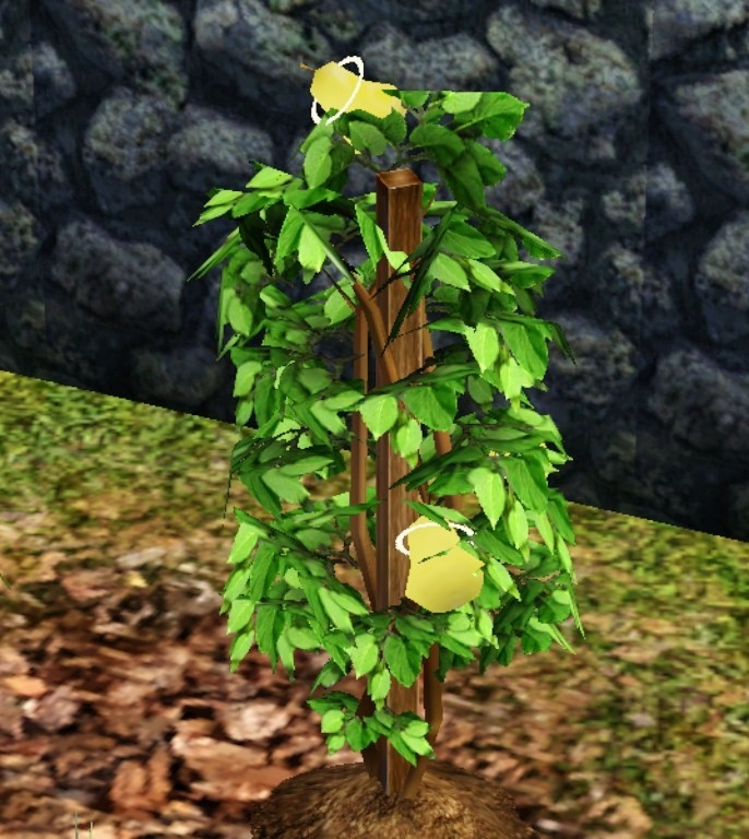 Life fruit | The Sims Wiki | FANDOM powered by Wikia