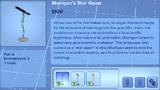 Morrigan Star Gazer