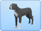 File:Breed-l58.png