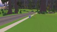 Redwood Glen Forest