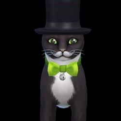 Mayor Whiskers