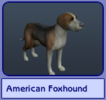American Foxhound (Sims 2)