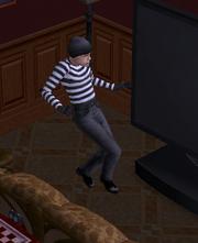 Ts2 burglar