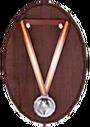 Медаль За надежность